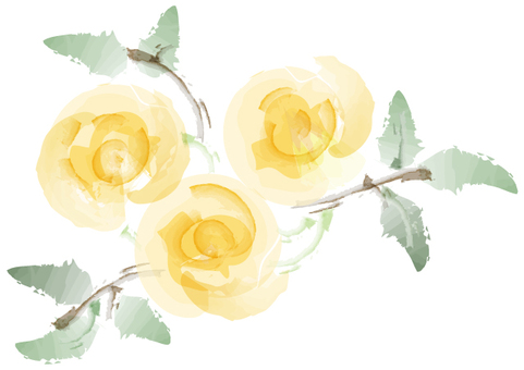 Roses (yellow