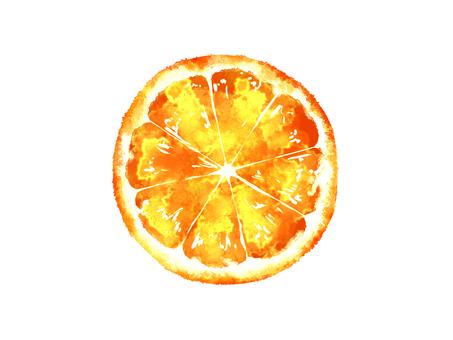 オレンジの断面素材01