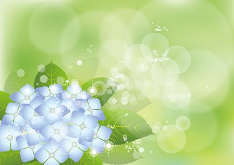 Hydrangea 2 in green 2