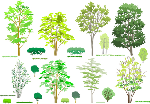 Illustration set of trees