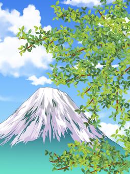 Trees and Mount Fuji