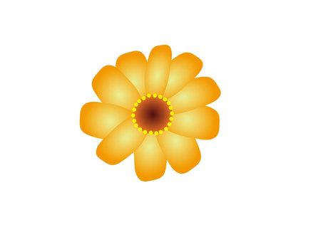 Flower (Part 1)