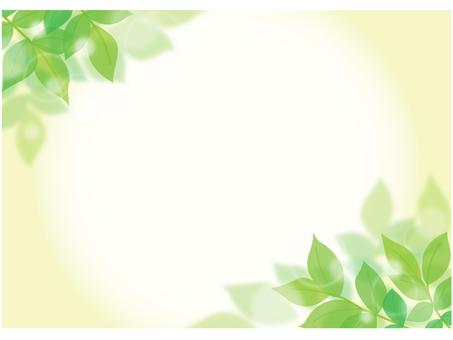Leaf background 1