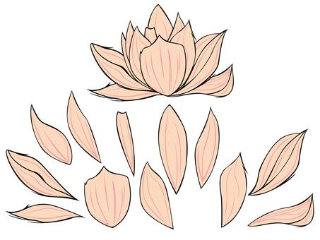 Flower / Plastic model