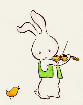 Violin rabbit 18