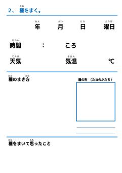 Free Study 04
