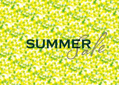 Summer Sale B4 Poster & Flyer 01