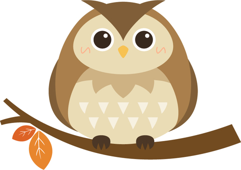 Owl_ branches