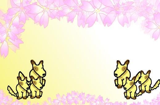 Dog frame 6