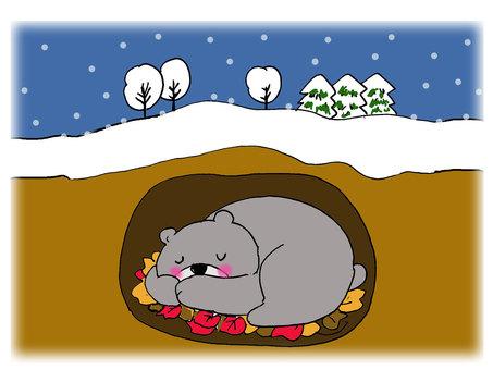 Bear's hibernation 2