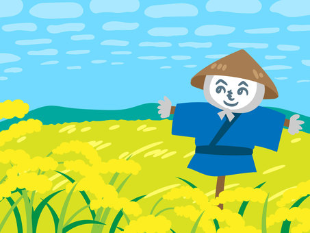 Autumn rice field and scarecrows
