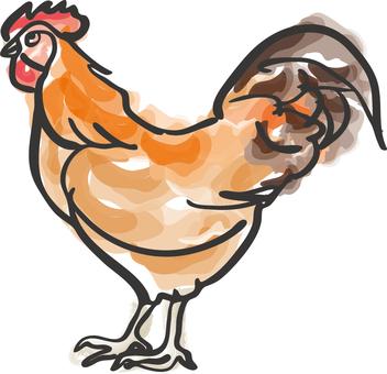 Ingredients _ chicken