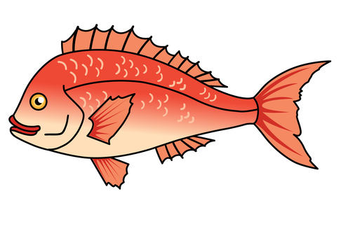 Fish illustration-Thailand