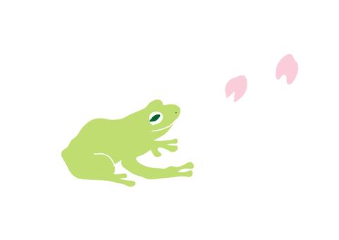 桜とカエル