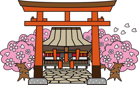 Townscape - Shrine - cherry tree