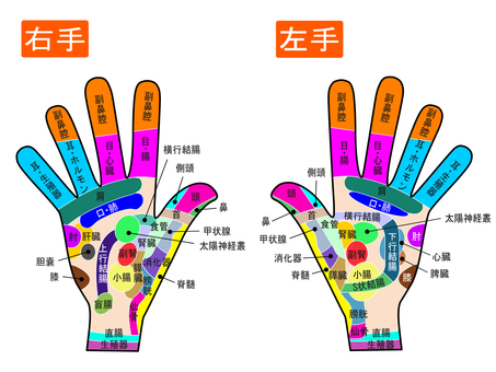 Points and reflection zones of both hands Figure 2