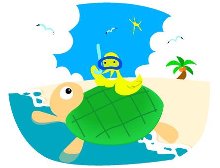 거북이와 새