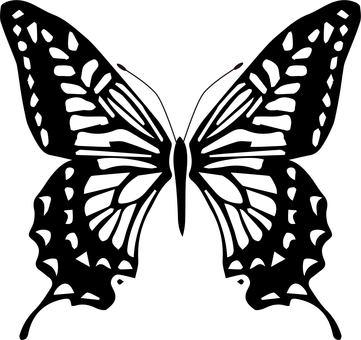 나비 01 흑백