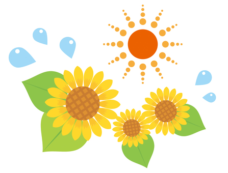 Illustration of sunflower and sun 02