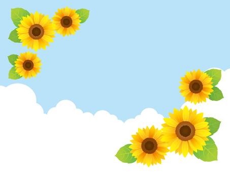 Sunflower frame sky