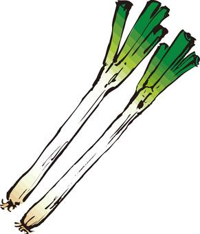 Green onion, green onion