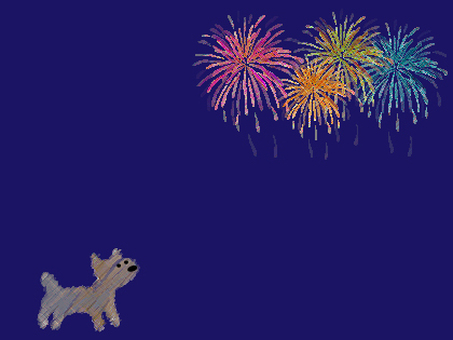 Dog and fireworks