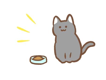 Cat food and cat