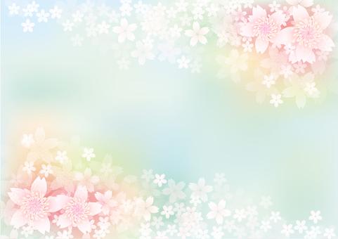 桜 flowers blooming 471