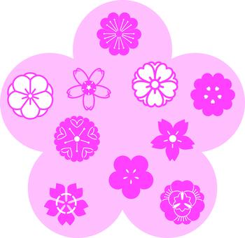Plum and cherry blossom pattern 10 types set