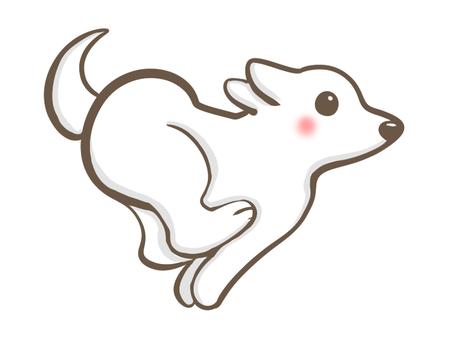 빨리 달리는 흰 개