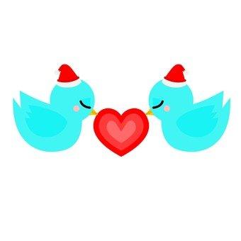 Santa hat bird (2)
