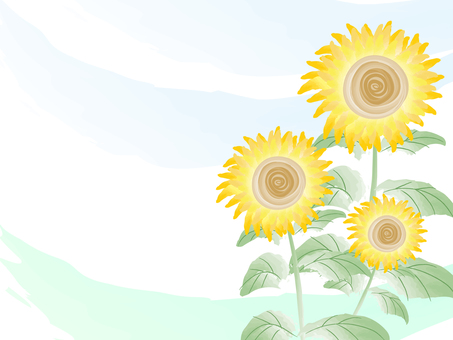 Water color Sunflower