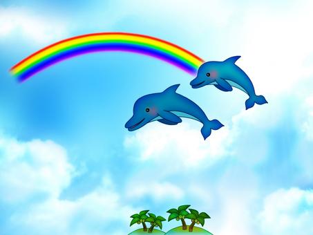 Rainbow, dolphin and kojima