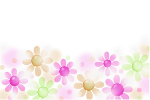 Gerbera's flower garden 3