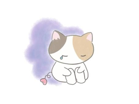Depressed calico cat