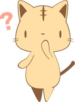 의문을 가진 고양이