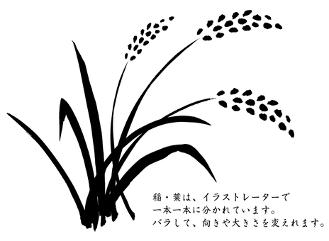 Rice spread with illustrator
