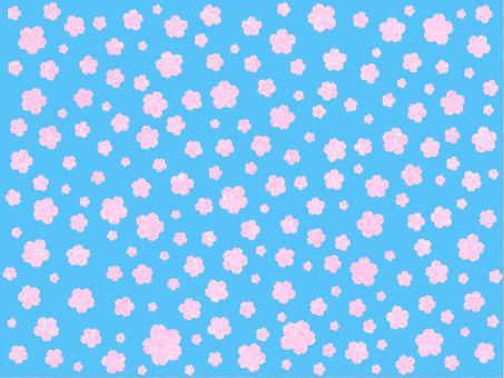 Cherry Blossoms Sky