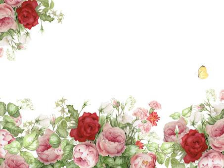 Flower frame 291 - Flower frame of gorgeous rose back