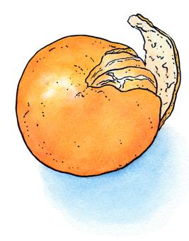 Mandarin orange peel