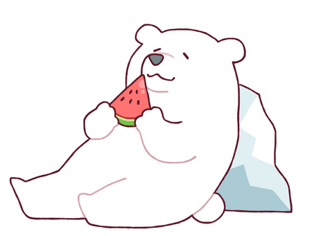 White bear eating watermelon