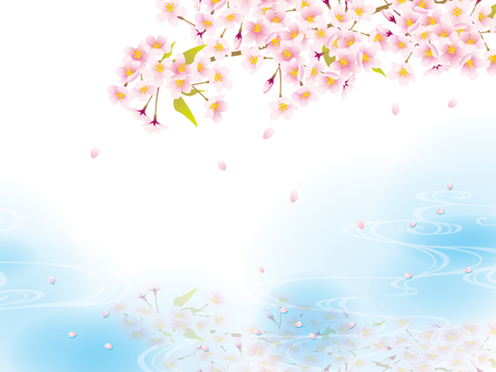 Cherry blossoms appearing on the surface of the water