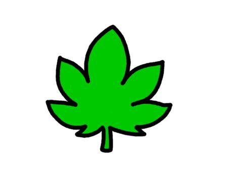 단풍 녹색