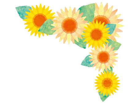 フレーム枠花ひまわり夏飾り挿絵水彩手描き