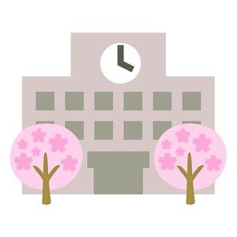 벚꽃 나무와 학교