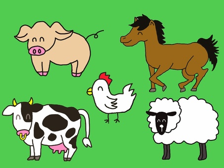 Animals Animal