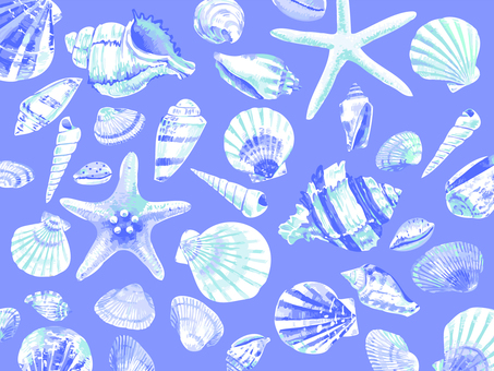 Background material 004 seashell