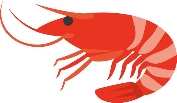 Shrimp Seafood Seafood