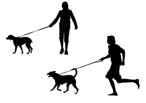 Walking a dog · Silhouette