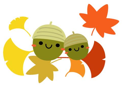 Fall illustration maple & ginkgo & acorns